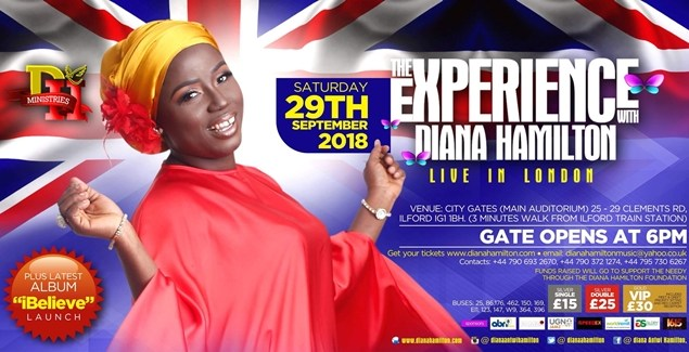 The Experience Diana Hamilton