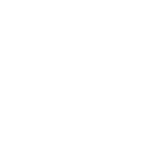 transparentproductions-logo-white