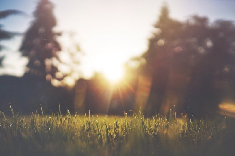 Why Becoming A Morning Person Will Change Your Life