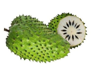 soursop would kill cancer