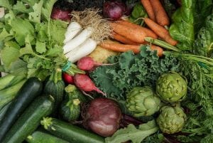 Normativa Gost R 57022 sobre agricultura biológica
