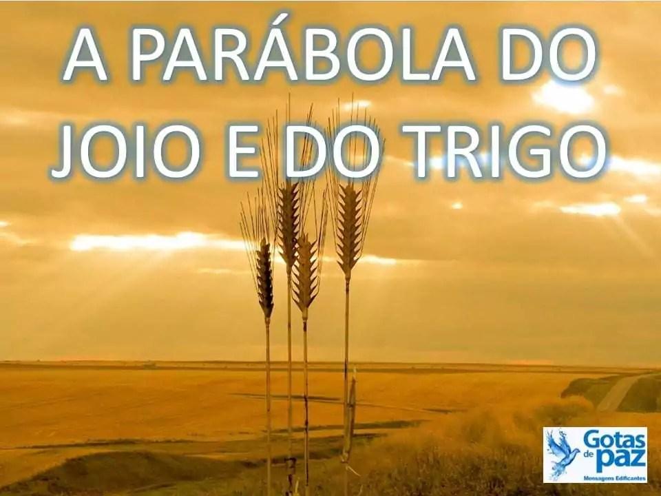 A PARÁBOLA DO JOIO E DO TRIGO