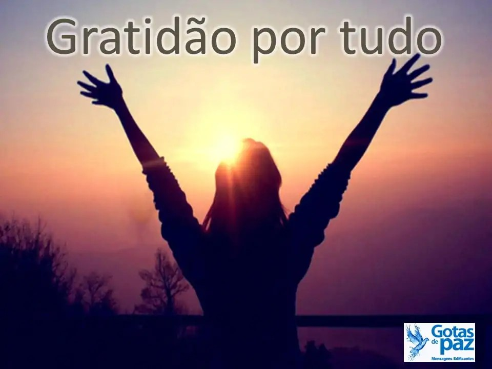 Gratidão por tudo