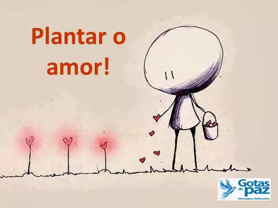 Plantar o amor!