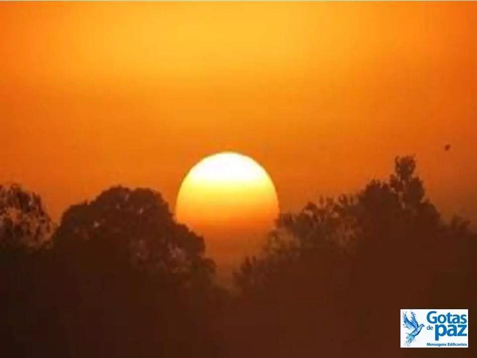Gratidão ao amanhecer