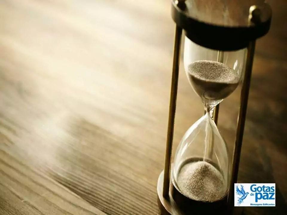 A paciência nos salva