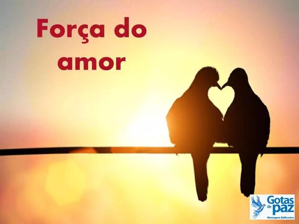 Força do amor