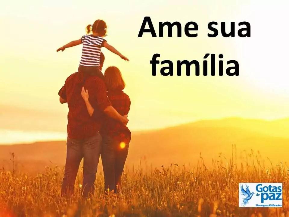 Ame sua família