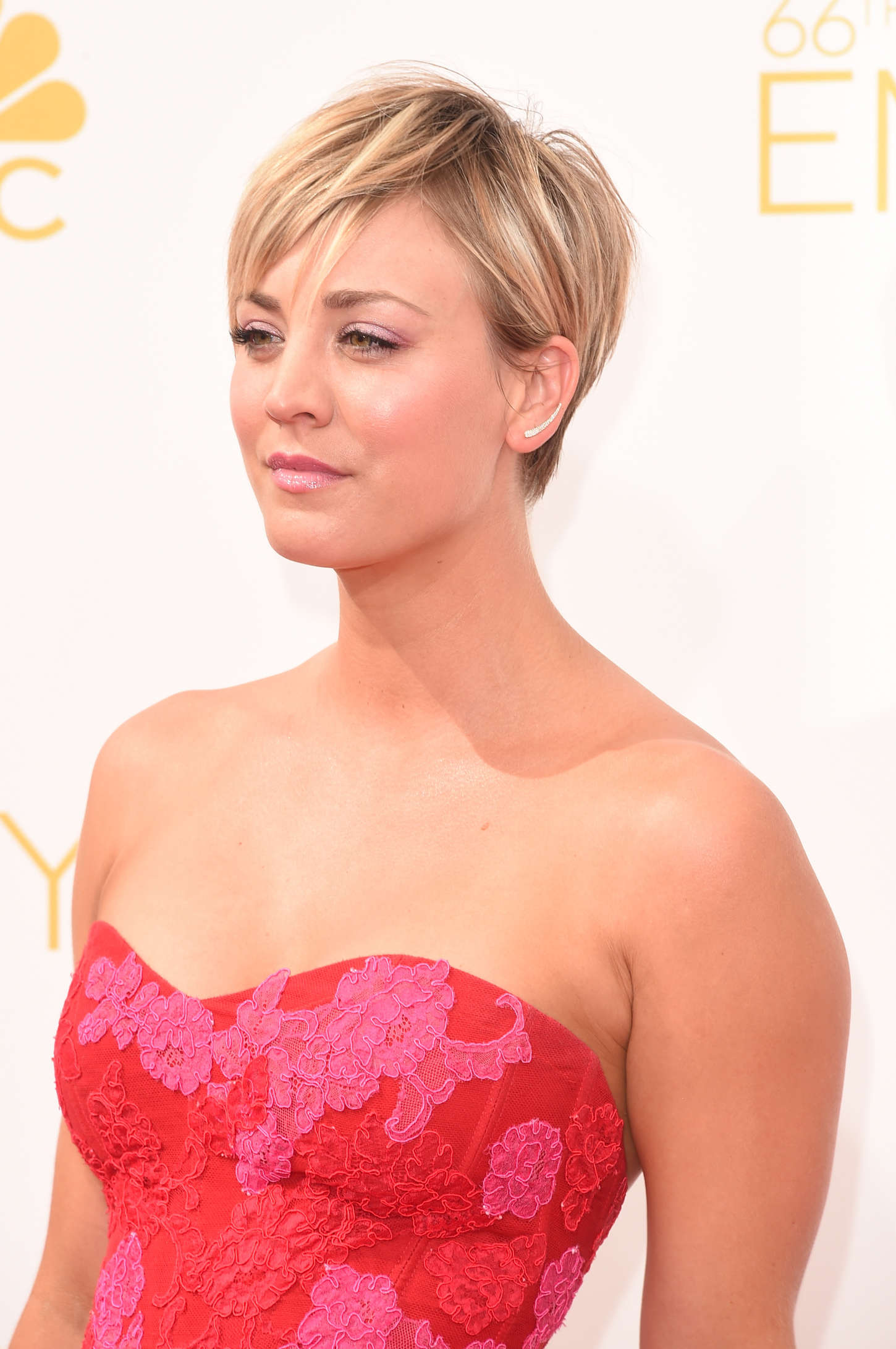Kaley Cuoco 2014 Primetime Emmy Awards 08 GotCeleb