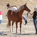 Kendall Jenner Horseback Riding In Santa Clarita 54 Gotceleb