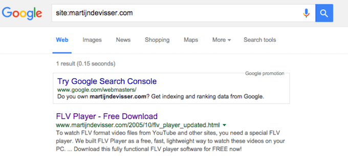 Google index check