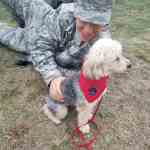 Pepper with Soldier