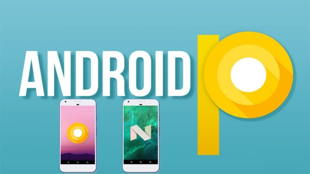 android P. img- cnn