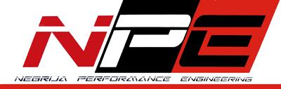 Logo NPE racing team