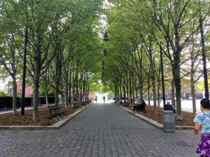 Battery Park walkway with leaves