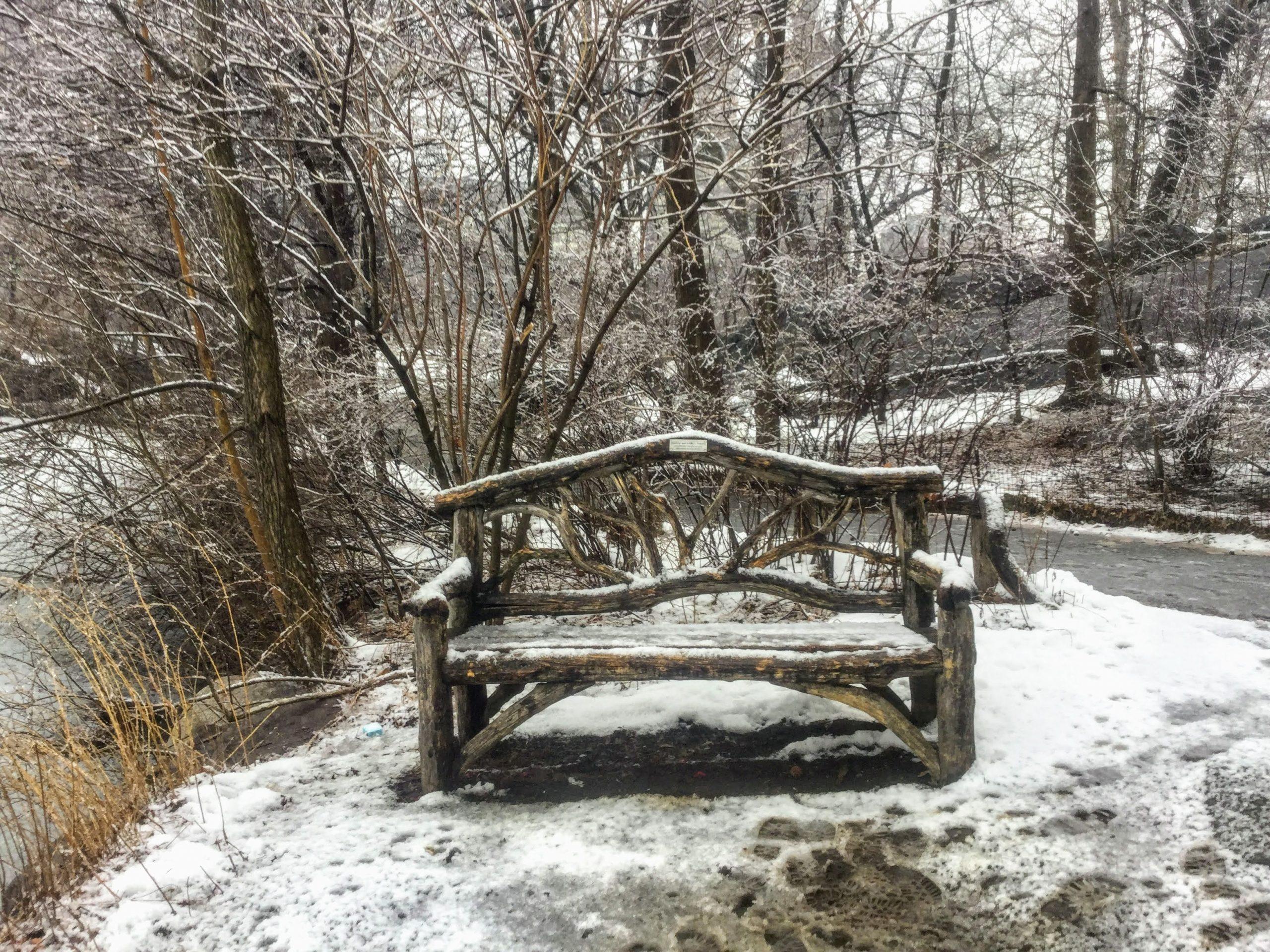 Central Park wooden park bench
