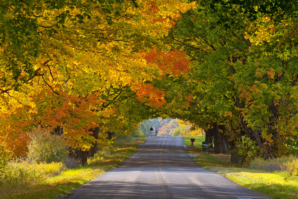 Less Crowded Fall Foliage Destinations Youve Never Thought Of