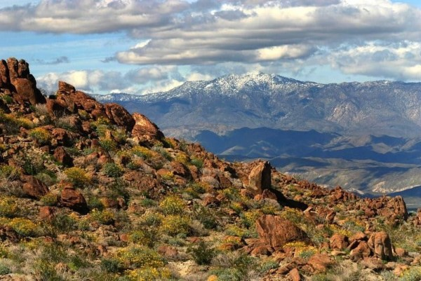 Mountain View Anza-Borrego