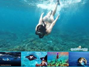 Snorkeling di Penida