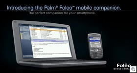 Palmfoleo