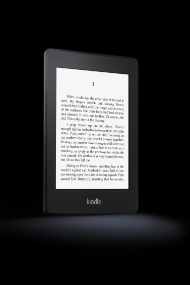 Kindle Paperwhite, Angle