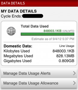 Check iPhone Data Usage