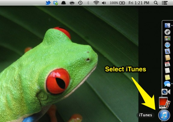 Select iTunes (Mac)