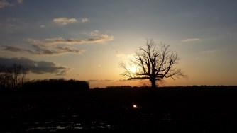 Samsung Galaxy S4 Sunset Photo Sample.