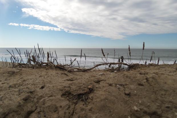 20131112_124611_Half Moon Bay Coastal Trail