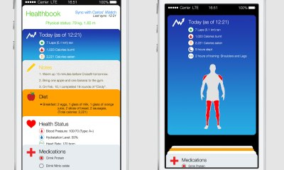 A new iOS 8 concept brings rumors to life, showing a health and fitness app.