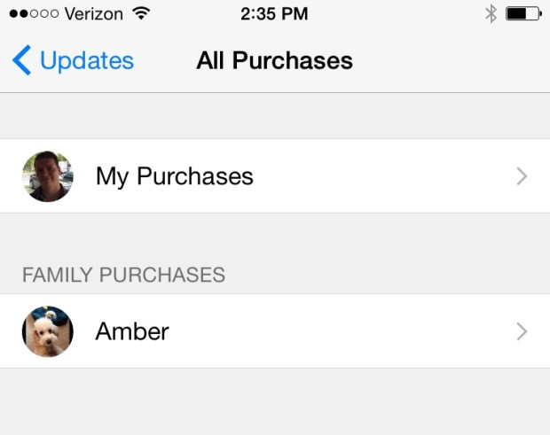 You can access Family Member purchases after you set up iOS 8 Family Sharing.