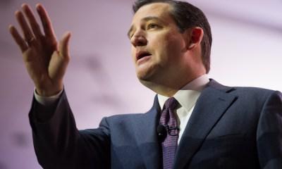Ted Cruz announced his presidential bid on Twitter. Christopher Halloran / Shutterstock.com