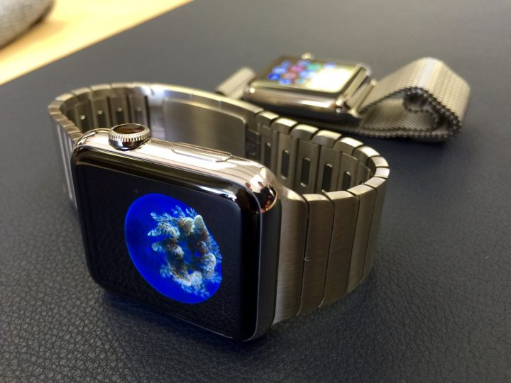 Apple watch shipments