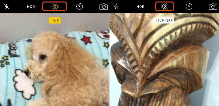 It's easy to see if Live Photos are on or off.