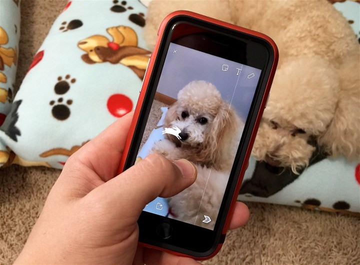 Learn how to use the new Snapchat video filters that come with the October Snapchat update.