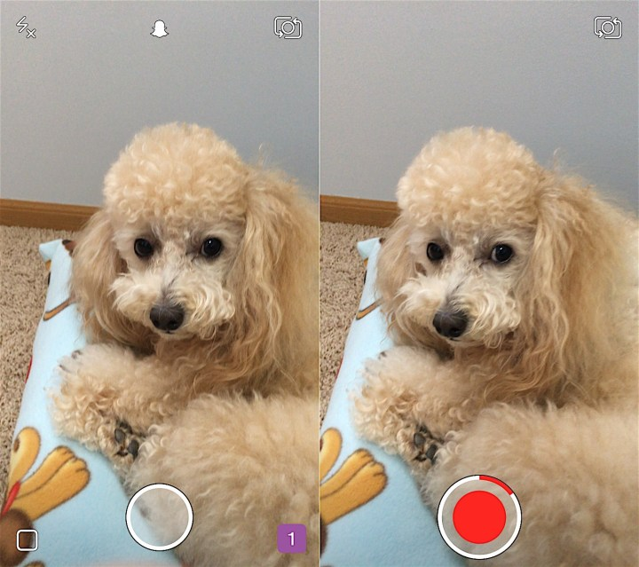 Hold the circle to record a Snapchat video.