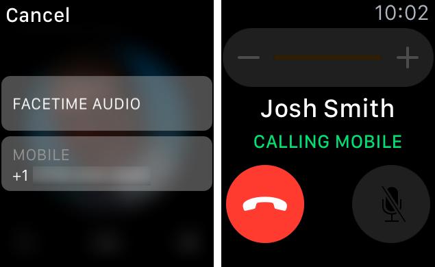 phone-call-apple-watch2