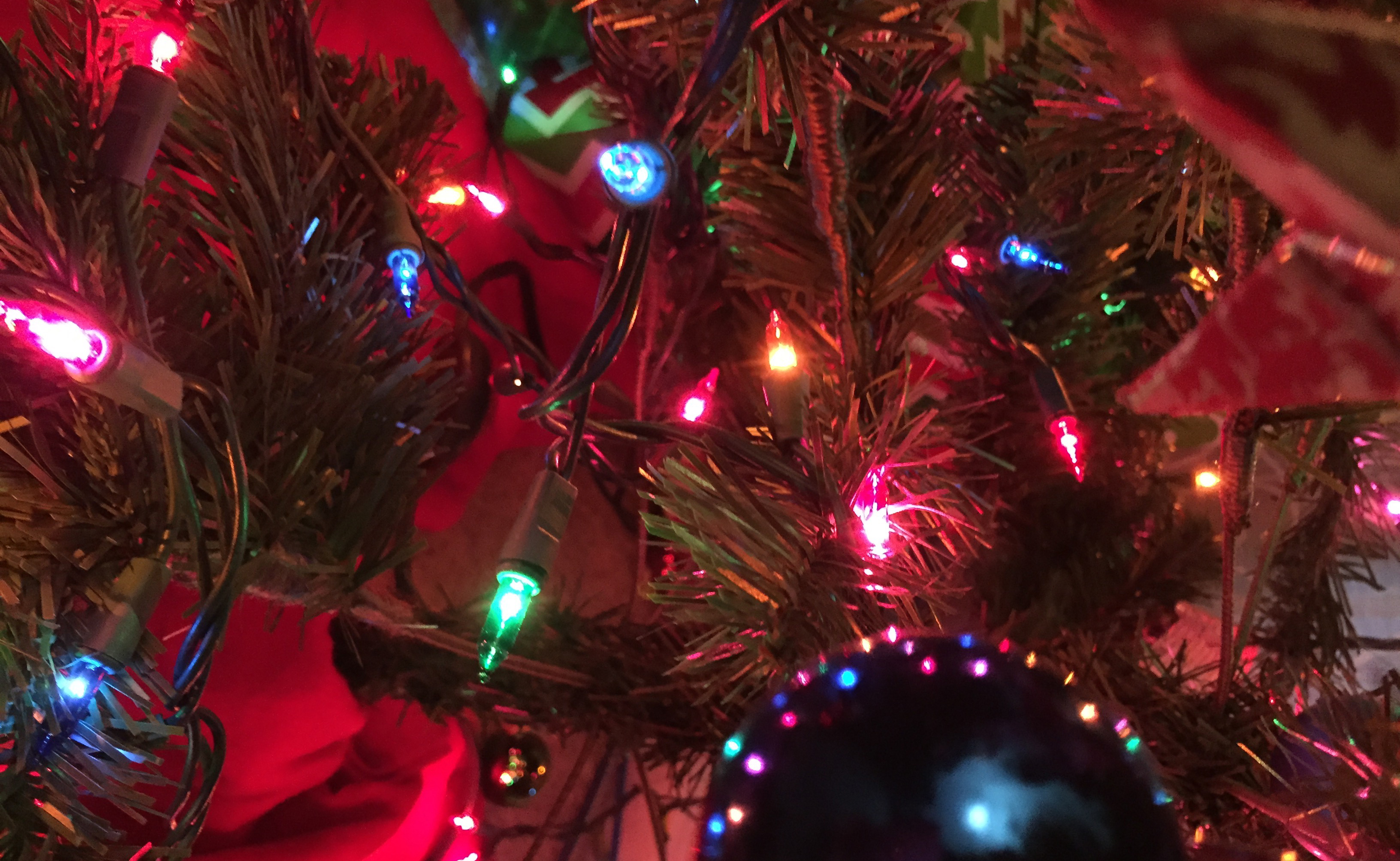 Will Christmas Lights Break or Affect My WiFi? Here's the Truth