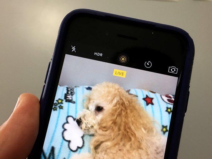 iOS 9.3 Photos Features