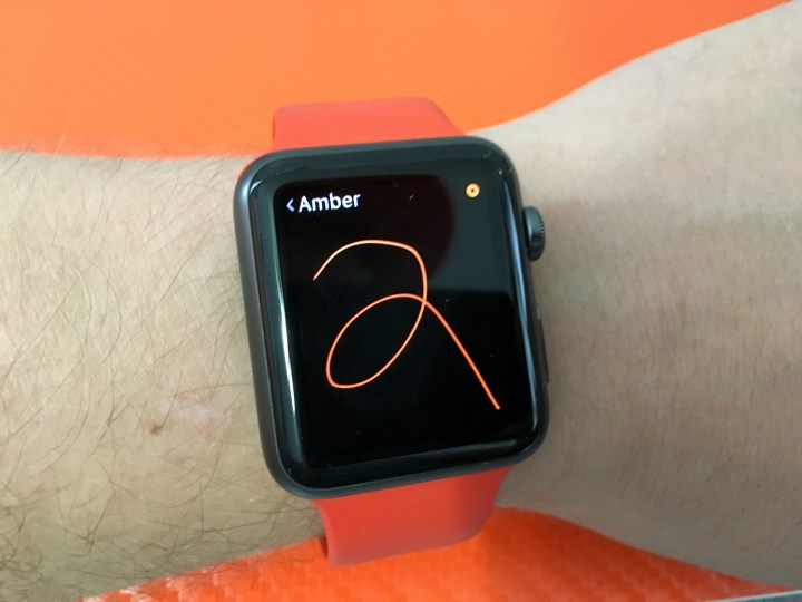 Don't Expect the Apple Watch 2