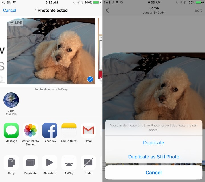 Duplicate a photo in iOS 9.3 so you don't lose a Live Photo when you edit.