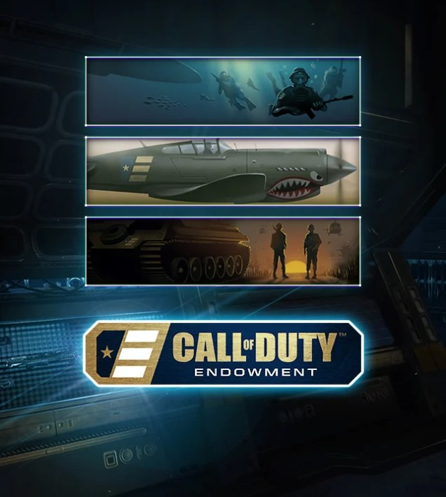Here is the new Black Ops 3 DLC, three calling cards that are in the C.O.D.E. Valor Calling Cards Set.
