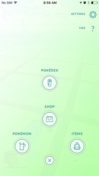 Pokemon GO Account Name Change (10)