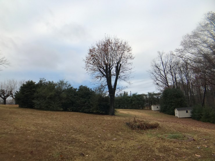 shot taken with wide--angle lens