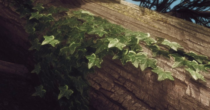 Wood Cover Retexture