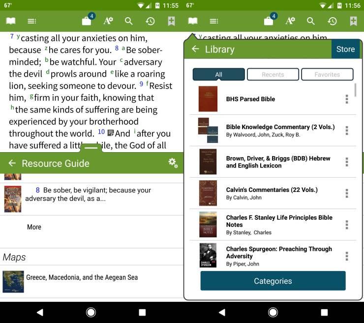 olive-tree-bible-1