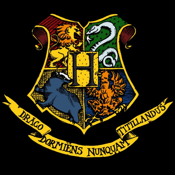 Hogwarts Houses as Teams