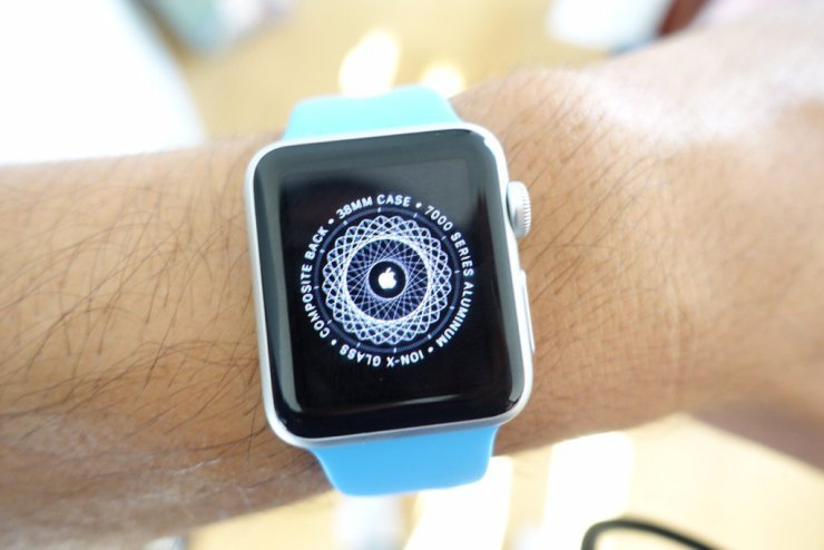 Install the watchOS 5 beta on your Apple Watch.