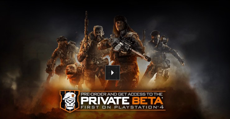 You can find your Call of Duty: Black Ops 4 beta token online or in your email.
