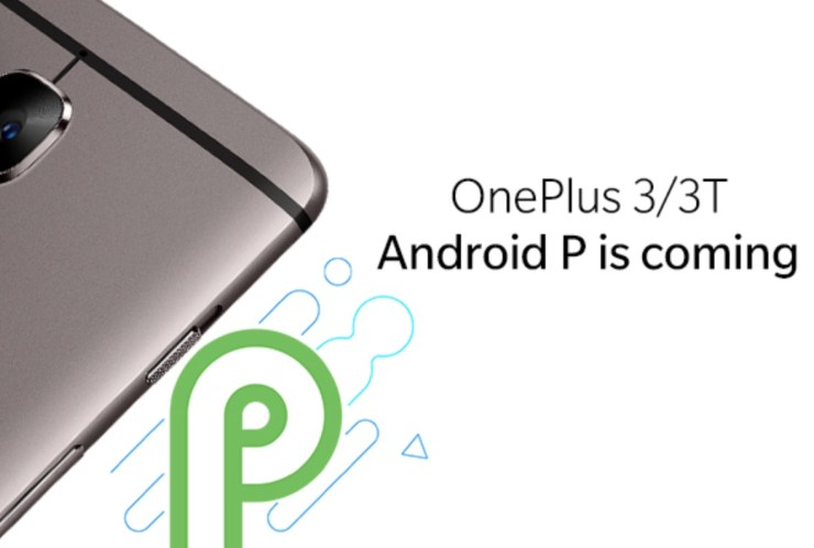 Will My OnePlus Get Android 9?